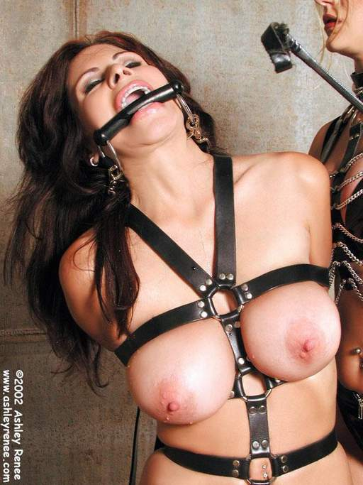 ashley renee in a bondage harness and about to get a riding crop on her breasts