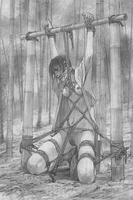 bamboo bondage