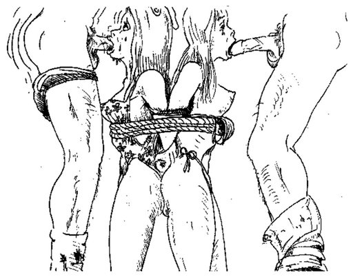 zerns double bondage blowjob art