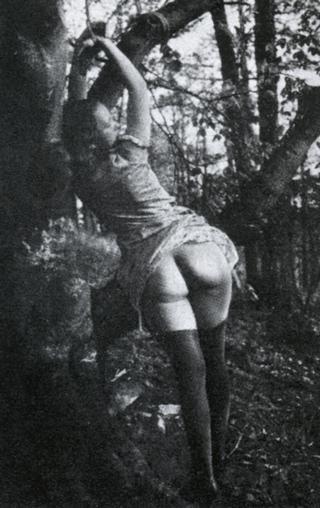 forest bondage, weimar berlin style