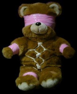 tied up teddy bear
