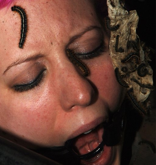 Cherry Torn in bondage with centipedes crawling on her