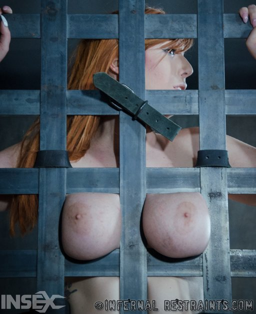 breasts tied between the bars of her cage