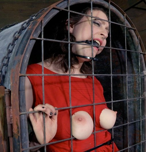 breast-cage-03