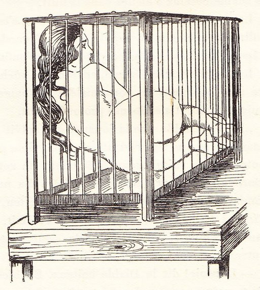 table top cage with nude woman