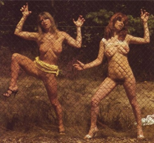 naked girls showing off through a chain link fence