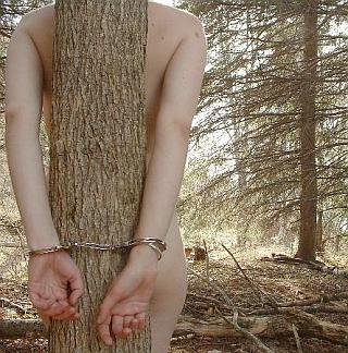 tree bondage in Canada