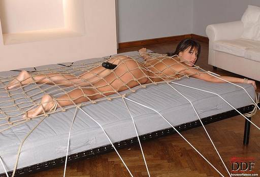 tied to a bed with a cargo net