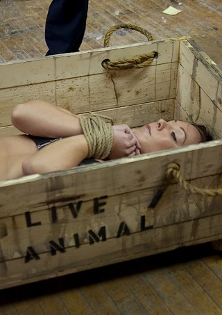slavegirl crated for shipping