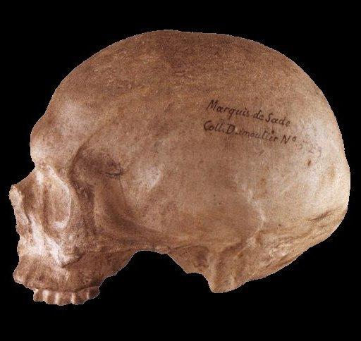 skull of de sade