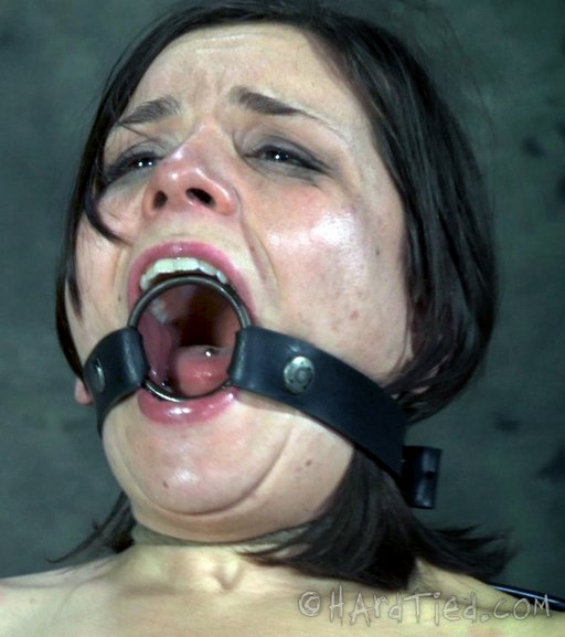 ring gag training