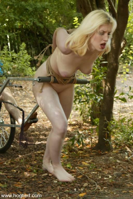 blonde ponygirl from hogtied.com