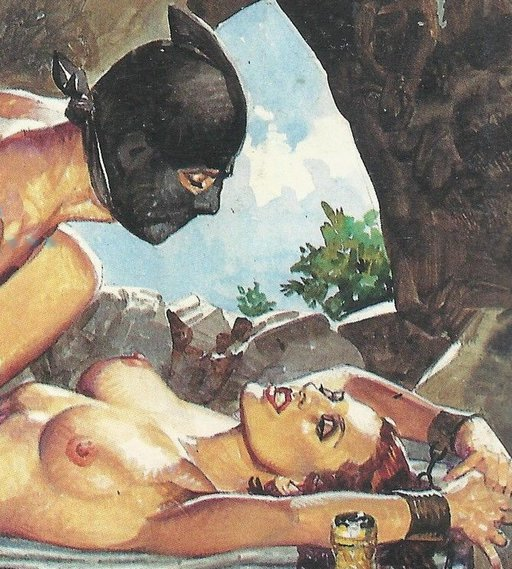ravished at a picnic by a masked man