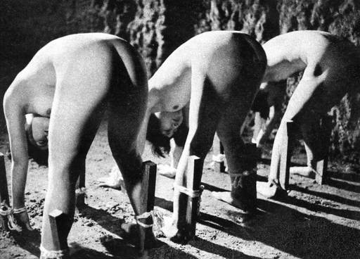 three japanese women tied bent over to stakes in the ground for sexing from behind