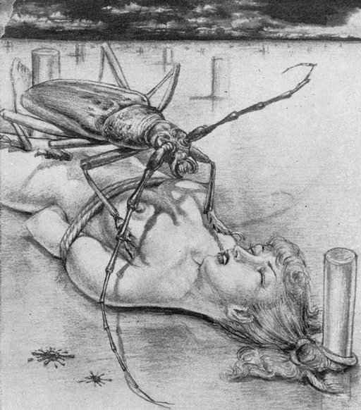 ice-beetle-sacrifice