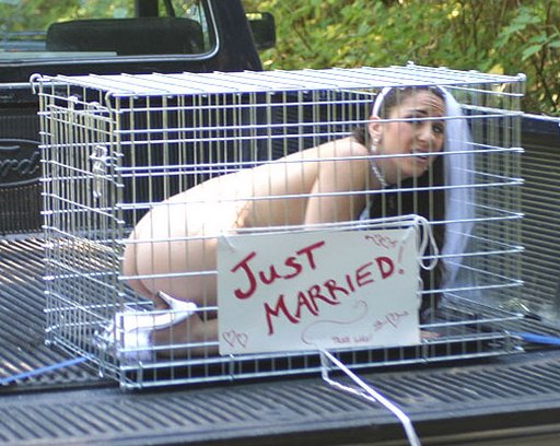 just-married-bride-in-kennel