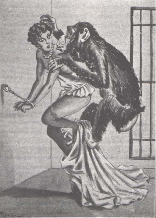 prison monkey