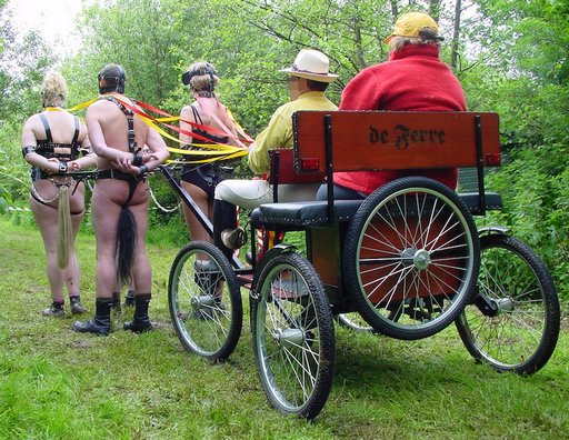 pony cart play in Wales