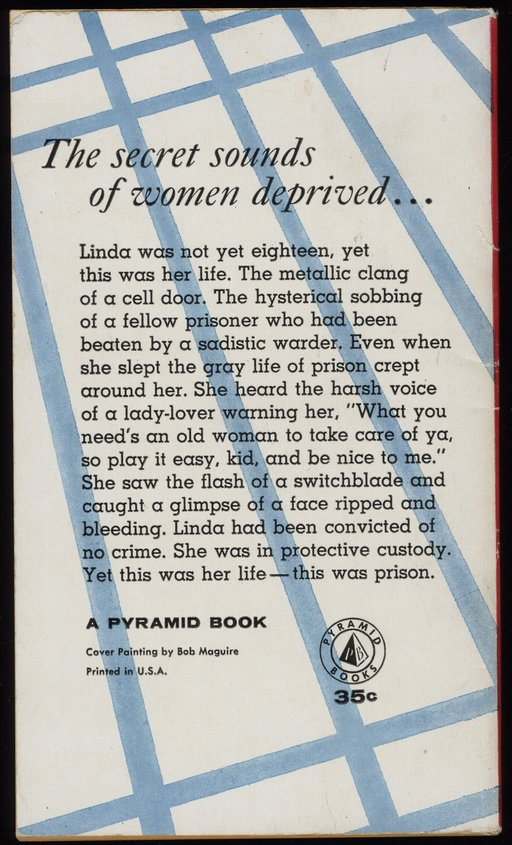 back cover of prison girl book