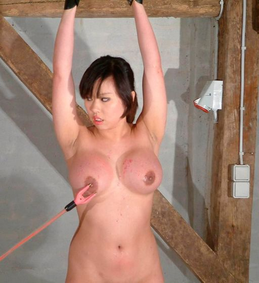 an electric cattle prod for her boobs
