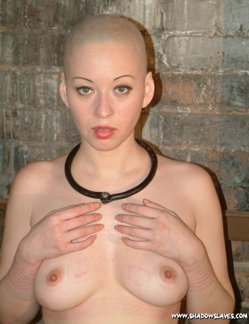 collared slave girl with a shaved head