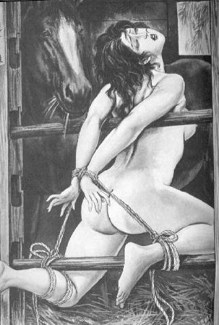 tied up in the horse stable