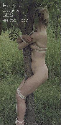 tree bondage from Farmer's Daughter BBS