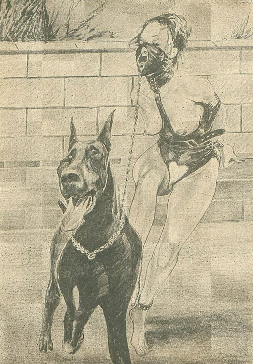 bdsm dog walking: bound slavegirl whose nose ring is affixed to the leash of an active and vigorous dog