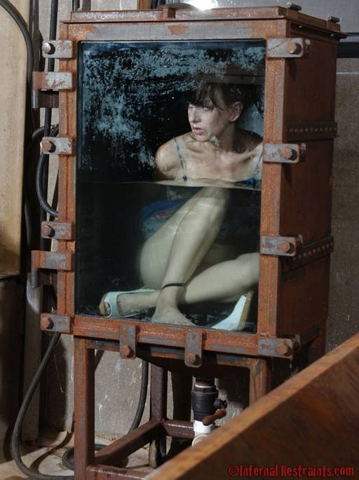 girl bolted into a metal and glass water closet, watching the water rise...